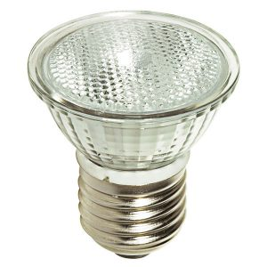 Old halogen light with screw on base