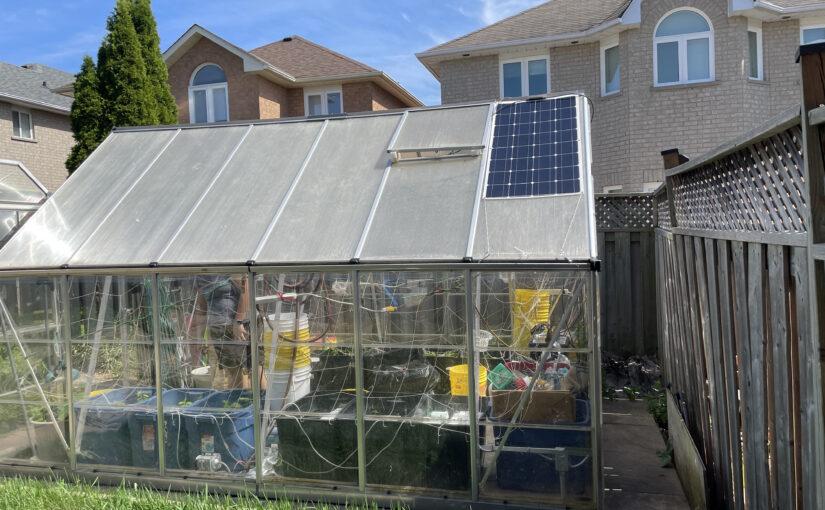 Green Sunroom Project